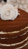 Tortas - Cupcakes :: Nude