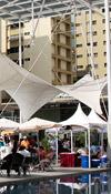 Eventos :: Expo-Gastronomia-Los-Palos-Grandes-II-2